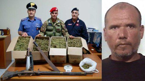Marijuana-e-Nicomedi